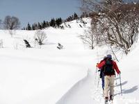 新雪の中を歩く