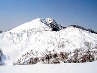 早春の大渚山